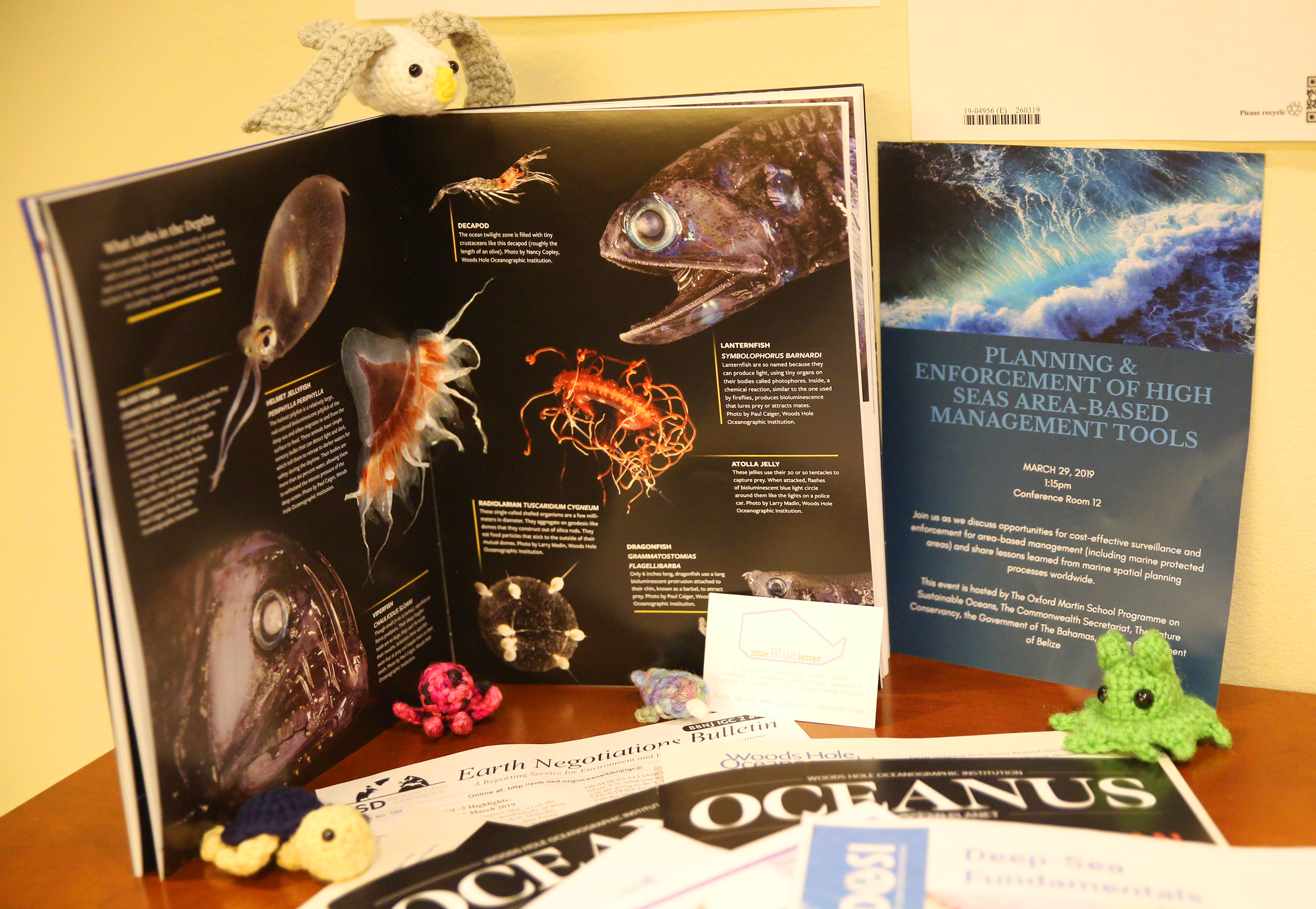 Over 200 copies of WHOI's Oceanus Magazine Twilight Zone special issue were distributed at the BBNJ second session conference. Each magazine was complemented by a cover letter tying the twilight zone to specific BBNJ topic areas. Photo by IISD/ENB | Francis Dejon