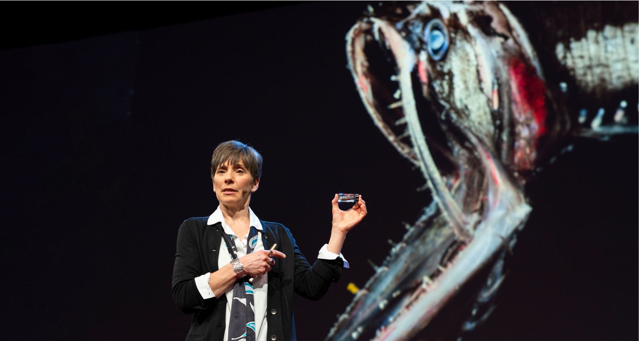 Terrifying but tiny - Projected on the TED stage behind Woods Hole Oceanographic's Ocean Twilight Zone Project Lead Heidi Sosik are the gaping jaws of a bristlemouth, a fish that dwells in the twilight zone. Bristlemouths may look terrifying, but a dozen of these tiny fish could fit in the vial she holds in her left hand. Photo by Bret Hartman, TED.