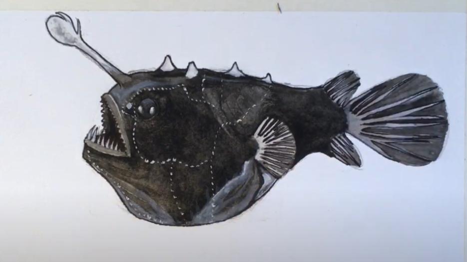 Female Angler Art