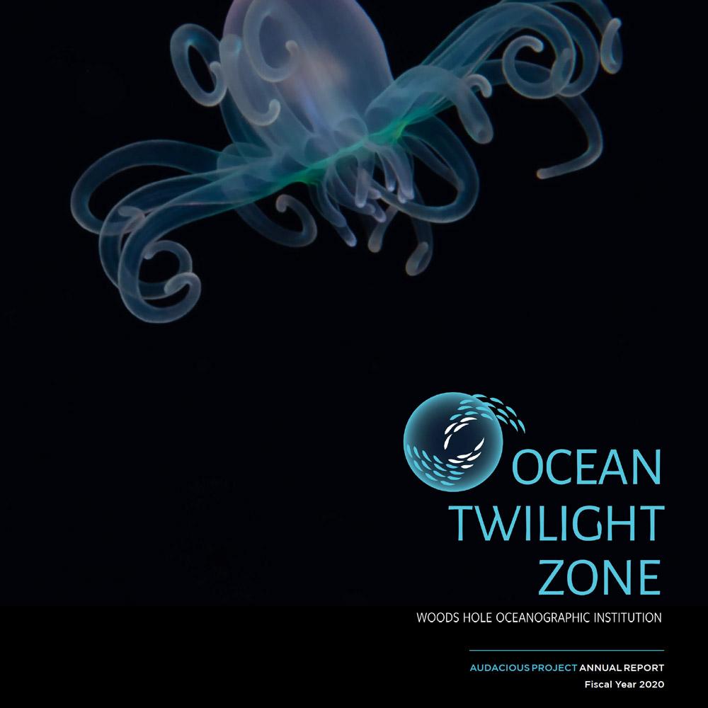OTZ 2020 annual report cover
