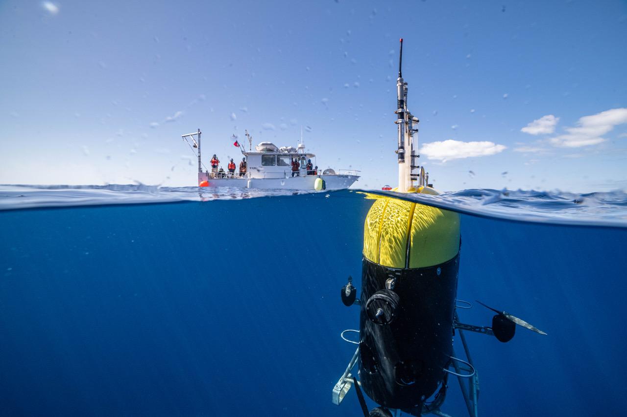 Robot Dives 3,000 Feet to Film Creatures in Mid-Ocean 'Twilight Zone'