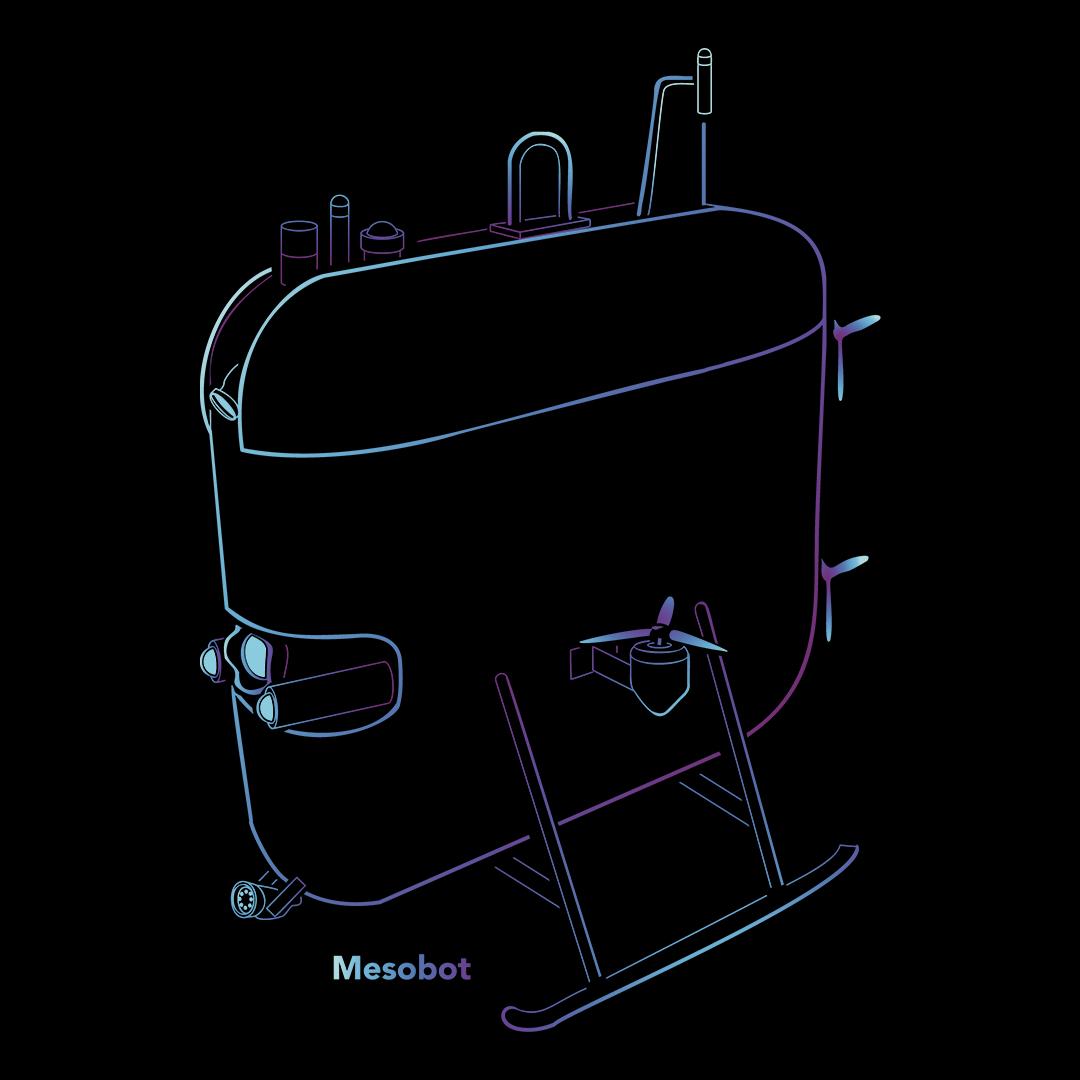 Mesobot