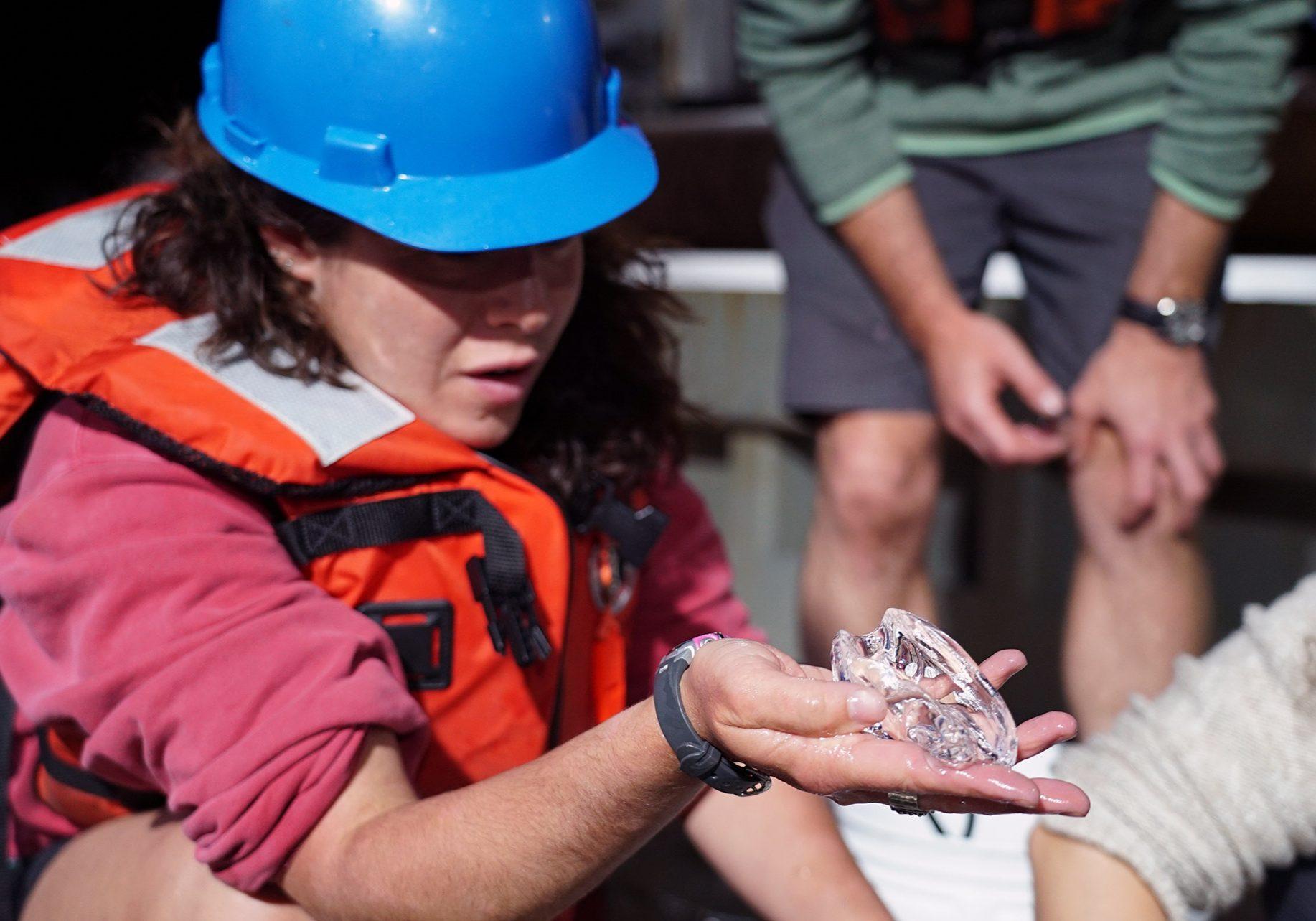 scientist in hard hat examines jellyfish