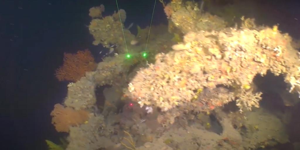 Exploring Deepwater Ecosystems