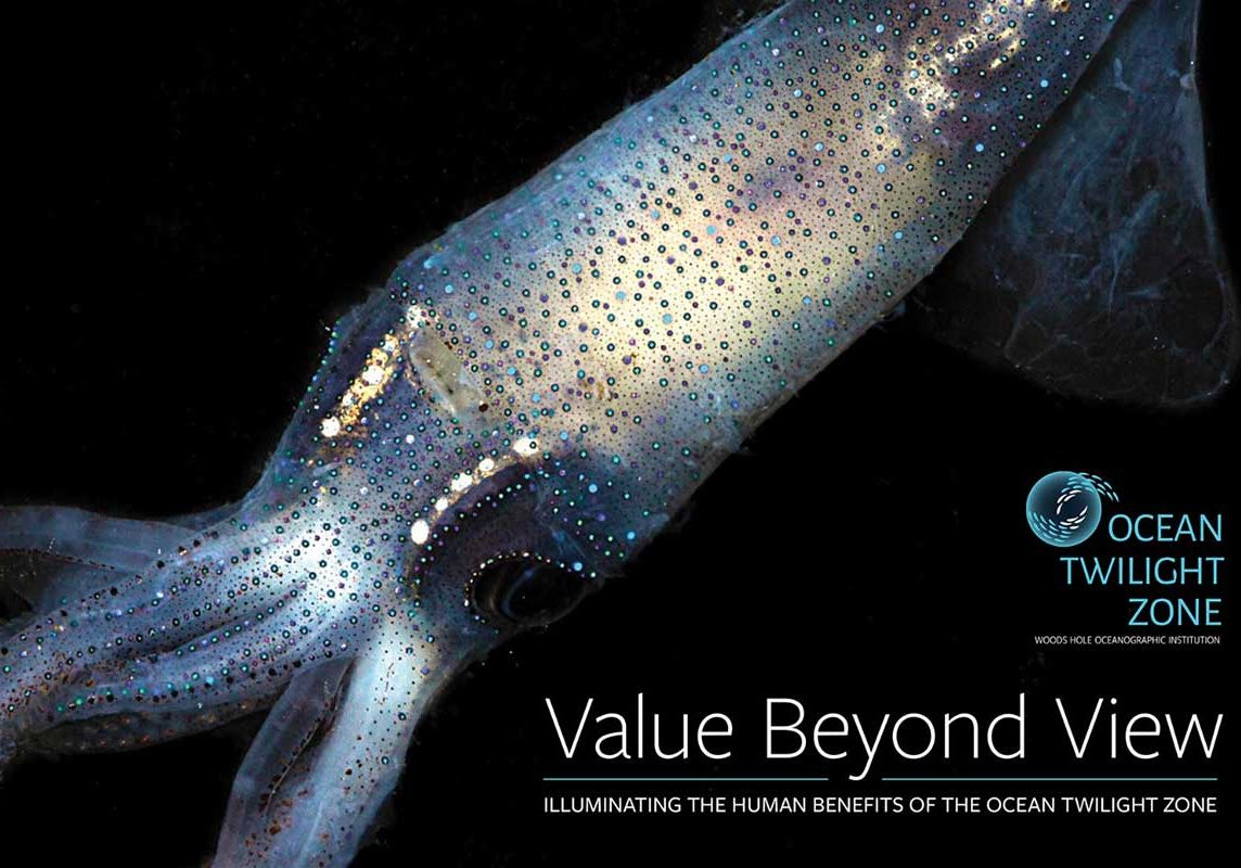 Value beyond view cover